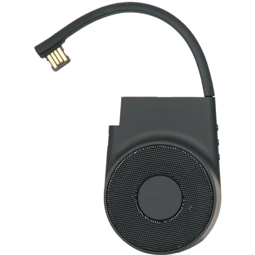 SPK-100 Speaker - resim 1